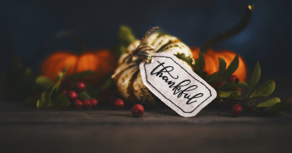 At the Timothy Plan, we're not only grateful to live in the freest and most prosperous nation in history, but for many blessings that God has bestowed on us. This past year alone, we reflected on some of those moments.